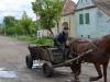 Pferdefuhrwerk statt Traktor